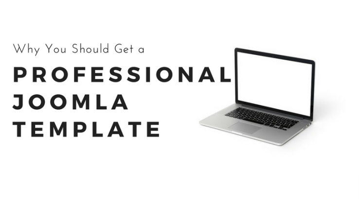 Professional Joomla Template